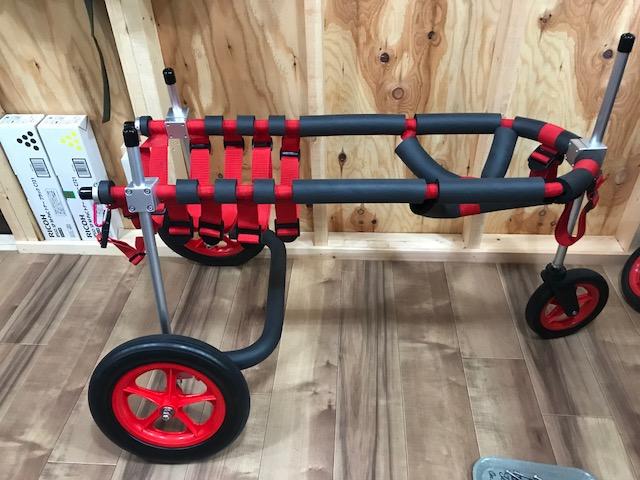 東京都のフラットコーテッドレトリーバー エアルちゃんの犬の車椅子