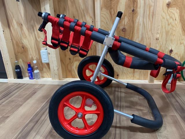 奈良県のバーニーズマウンテンドッグ ゴンちゃんの犬の車椅子