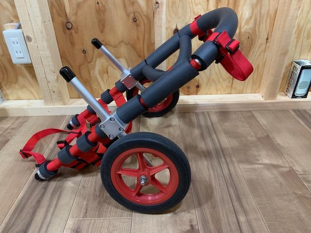大分県のコーギー 小梅ちゃんの犬の車椅子