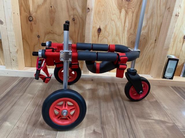 東京都のヨークシャーテリア ヨッチちゃんの犬の車椅子