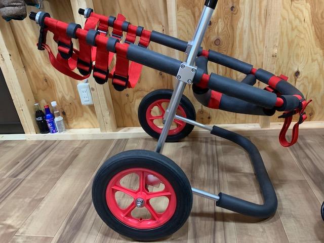 愛知県のグレートピレニーズ ハッピーちゃんの犬の車椅子