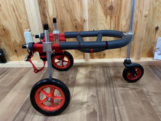 鹿児島県の豆柴 ちびちゃんの犬の車椅子