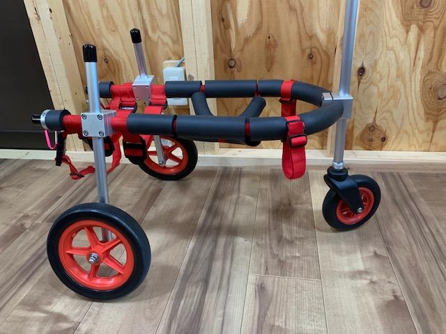 岐阜県の柴犬 ふくちゃんの犬の車椅子