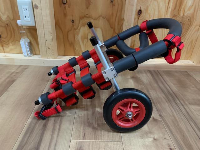 茨城県のミニチュアダックスフンド ゴンちゃんの犬の車椅子