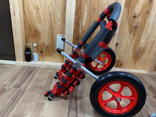山口県の甲斐犬 クロちゃんの犬の車椅子
