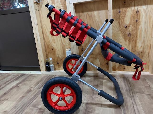 兵庫県の土佐犬 LIB(リブ)ちゃんの犬の車椅子