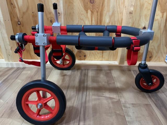千葉県のシェットランドシープドッグ スウィーピーちゃんの犬用車椅子