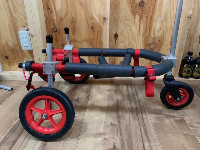 福岡県のコーギー そらちゃんの三輪車椅子