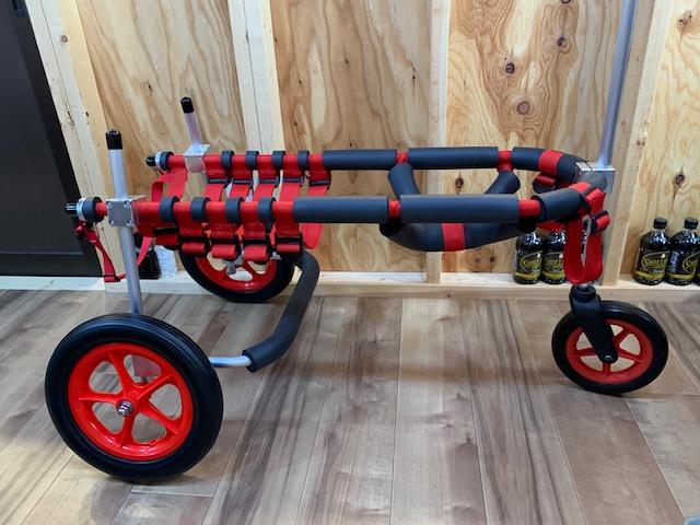 埼玉県のラブラドールレトリーバー はなちゃんの犬の車椅子と三輪車椅子について。
