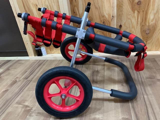 大阪府のラブラドールレトリーバー ミルちゃんの犬の車椅子