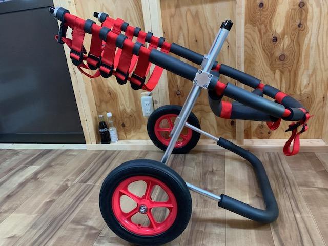 秋田県のグレートピレニーズ くうちゃんの犬の車椅子