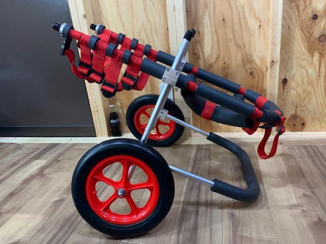 北海道のドーベルマン ねじちゃんの犬の車椅子