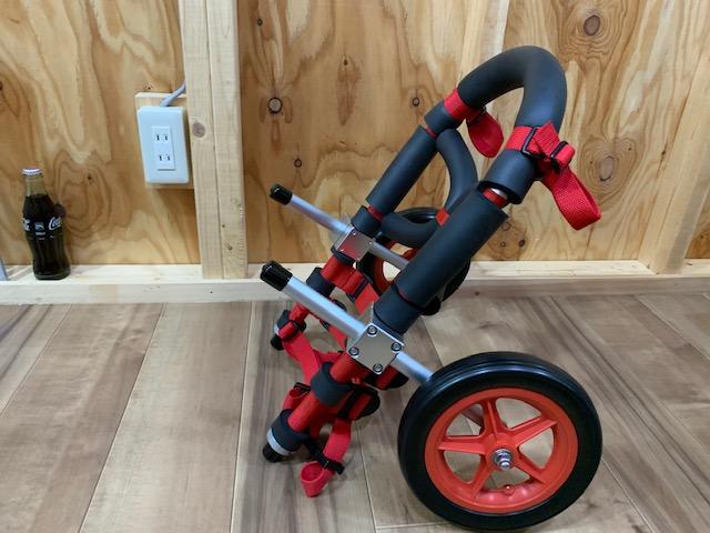 福岡県のフレンチブルドッグ 太郎ちゃんの犬の車椅子