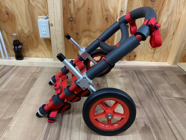 兵庫県のコーギー テトラちゃんの犬の車椅子