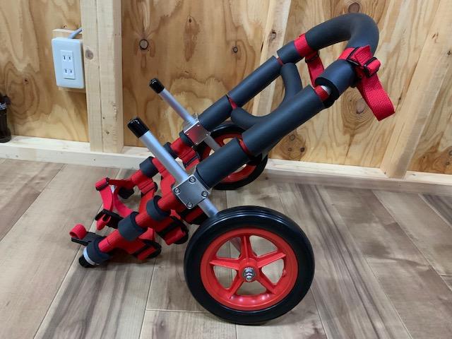 東京都のコーギー メロンちゃんの犬の車椅子