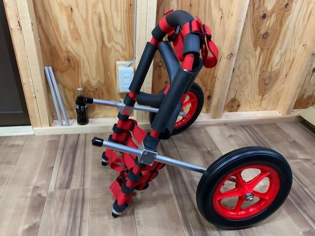 兵庫県のミックス犬 さくらちゃんの犬の車椅子