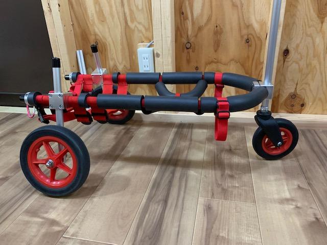 愛知県のバセットハウンド ドットちゃんの犬の車椅子