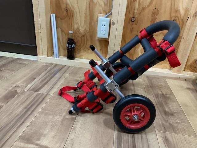 愛知県のミニチュアダックスフンド はるちゃんの犬の車椅子