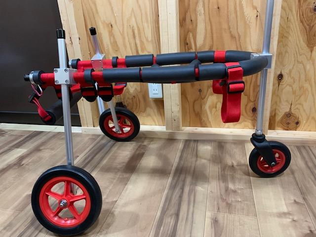 群馬県のミックス犬 リュウちゃんの犬の車椅子