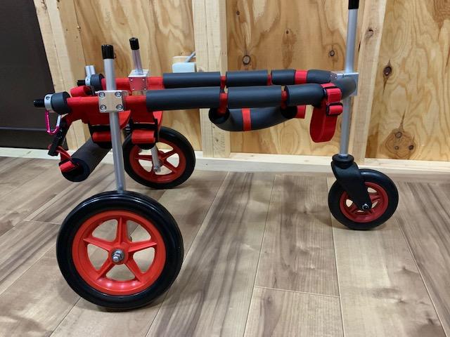 三重県の柴犬 ミニちゃんの犬の車椅子