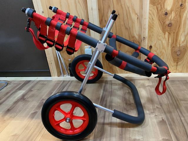 京都府の秋田犬 黒兵衛ちゃんの犬の車椅子