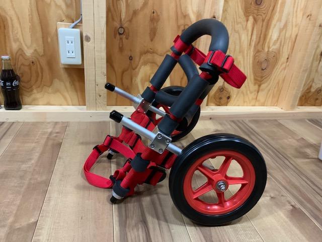 埼玉県のパグ ころんちゃんの犬の車椅子