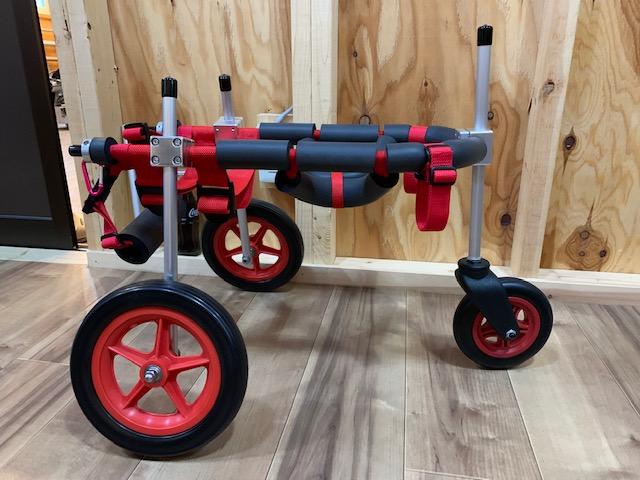 三重県の柴犬 コタロウちゃんの犬の車椅子