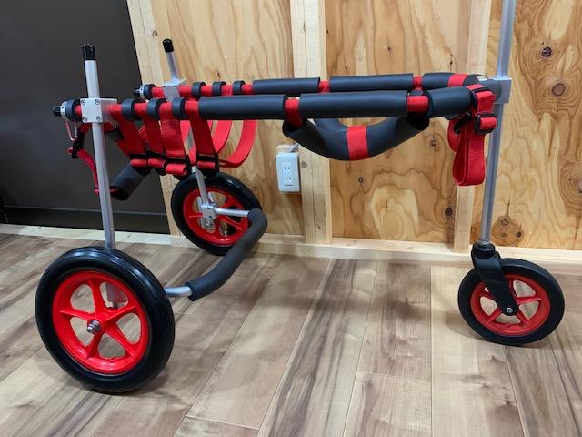 宮城県のボーダーコリー ツキネちゃんの犬の車椅子