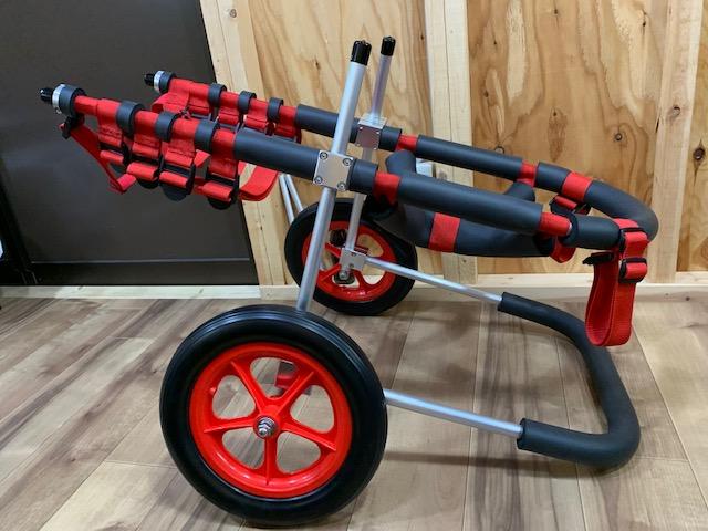 香川県のフラットコーテッドレトリーバー はなちゃんの犬の車椅子