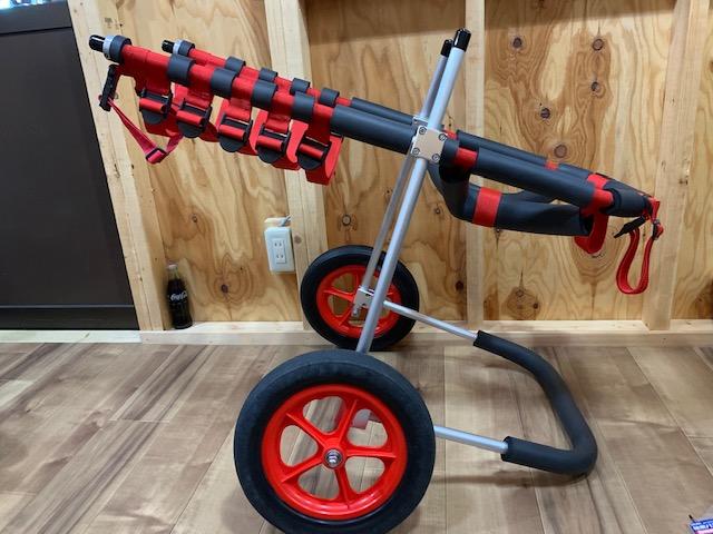 東京都のグレートピレニーズ ブランちゃんの犬の車椅子