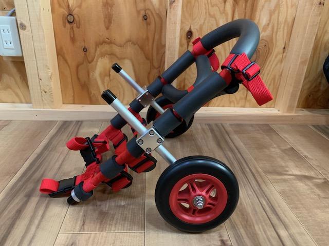 北海道のミニチュアダックスフンド アルフちゃんの犬の車椅子