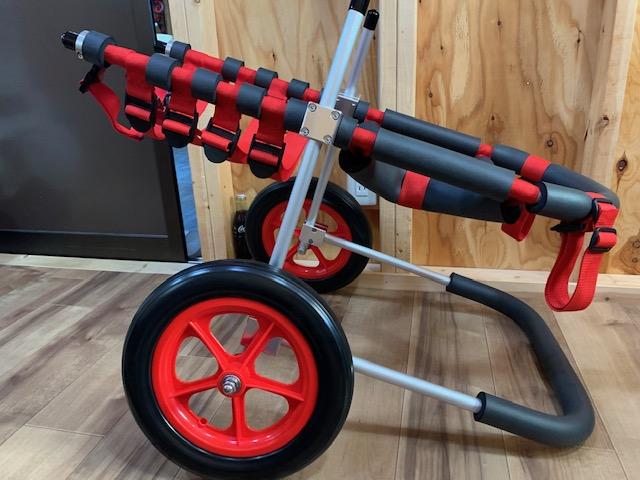 大阪府のゴールデンレトリーバー ルナちゃんの犬の車椅子