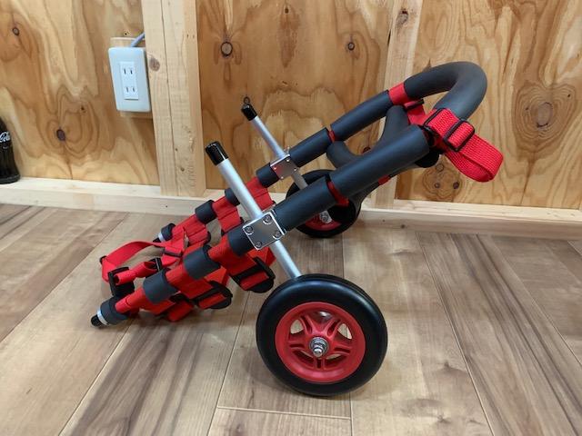 山口県のダックスフンド れおちゃんの犬の車椅子