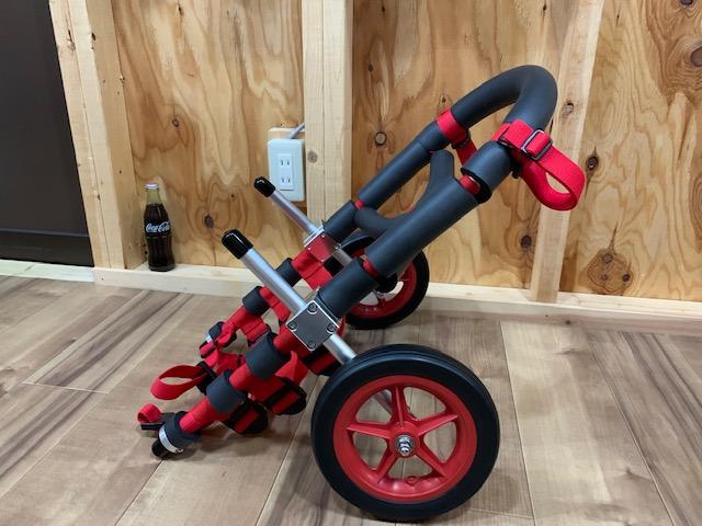 福井県のコーギー リッキーちゃんの犬の車椅子