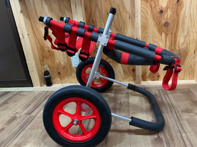 愛知県の紀州犬ミックス ジョンちゃんの犬の車椅子