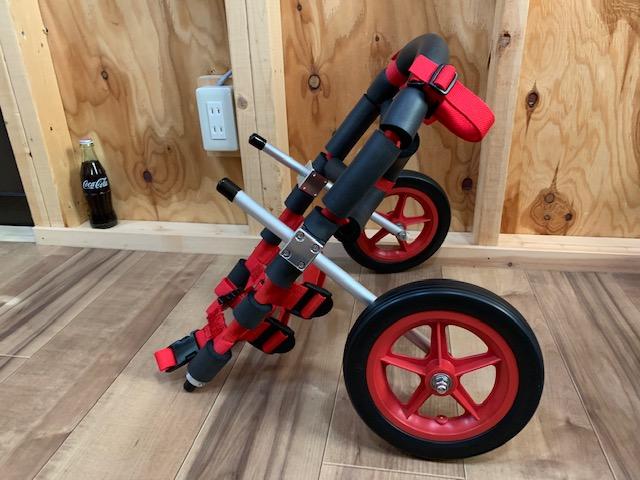 大分県のフレンチブルドッグ ひなちゃんの犬の車椅子