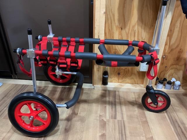 茨城県の大型犬 ボルトちゃんの犬の車椅子