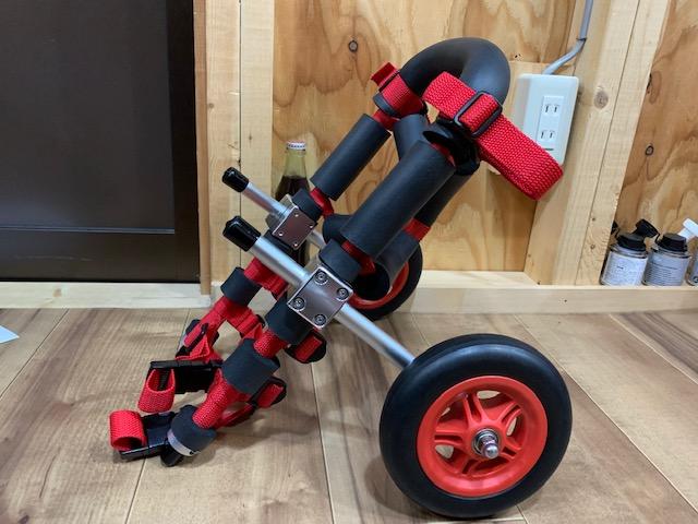 北海道のペキニーズ ペールちゃんの犬の車椅子