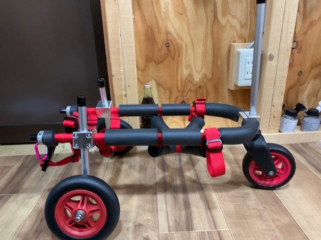 茨城県のミニチュアダックスフンド チョコちゃんの犬の車椅子
