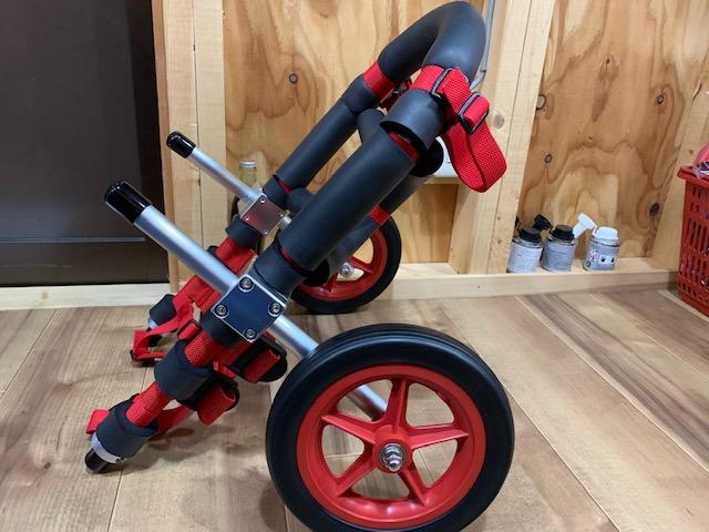 沖縄県のフレンチブルドッグ じゃじゃ丸ちゃんの犬の車椅子