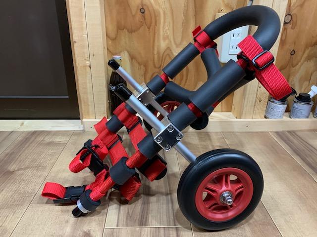 神奈川県のミニチュアダックスフンド チョッパーちゃんの犬の車椅子