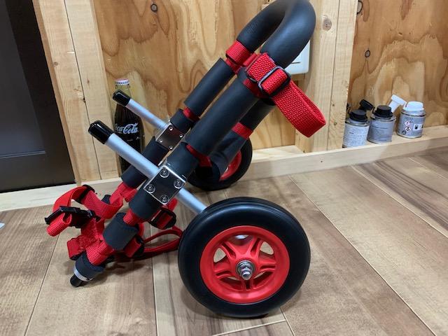 秋田県のミニチュアダックスフンド マロンちゃんの犬の車椅子