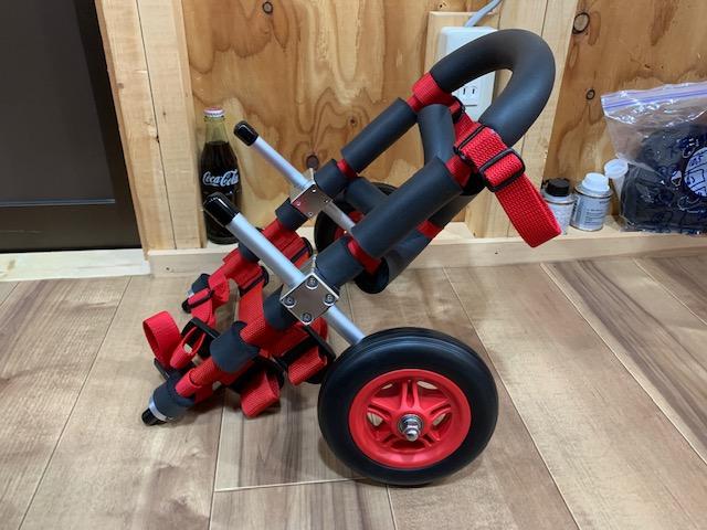 新潟県のミニチュアダックスフンド タロウちゃんの犬の車椅子