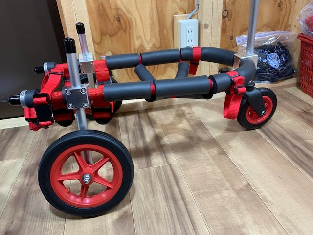 大阪府のコーギー うるまちゃんの犬の車椅子