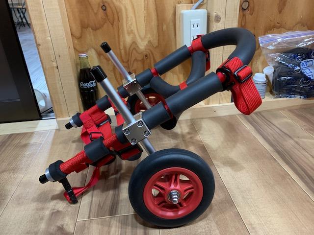 北海道のミニチュアダックスフンド ベッキーちゃんの犬の車椅子