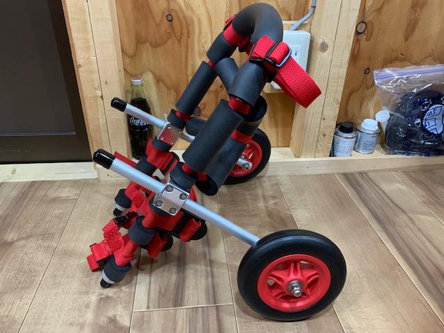 愛知県のトイプードル リアンちゃんの車椅子