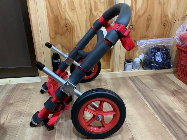 千葉県のコーギー ケアルちゃんの車椅子