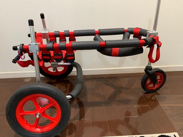 茨城県のラブラドールレトリーバー レオンちゃんの犬の車椅子