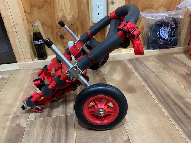 鹿児島県のミニチュアダックスフンド マロちゃんの犬の車椅子