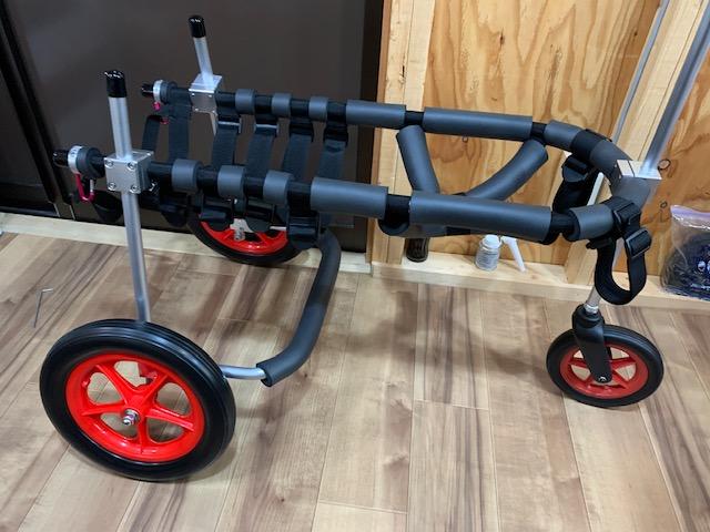 サンフランシスコのラブラドールレトリーバー ユキちゃんの犬の車椅子